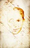 Testa e cranio parziali su pergamena Immagine Stock