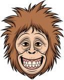 Testa felice della scimmia Immagini Stock