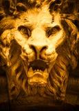Testa a forma di leone del demone Fotografia Stock