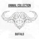 Testa geometrica del bufalo Immagini Stock