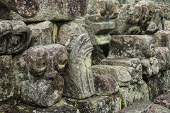 Testa maya scolpita dell'animale, Copan, Honduras Fotografia Stock Libera da Diritti