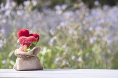 Testa nell'amore in biglietto di S. Valentino naturale Immagine Stock Libera da Diritti