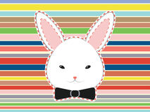Testa sveglia del coniglio Fotografie Stock Libere da Diritti