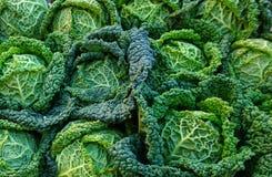 Testa verde della vista superiore del cavolo Verdura naturale, organica e di salute fotografia stock libera da diritti