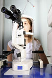 testa vision Fotografering för Bildbyråer