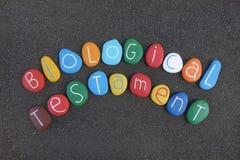 Testament biologique, testament de vie, directive anticipée de soins de santé, texte de composition avec les pierres colorées au- images stock