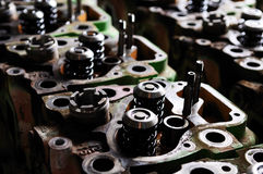 Testate di cilindro fotografia stock