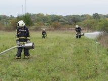 Teste de água na grama verde Fotografia de Stock