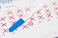 Teste de gravidez positivo com calendário Imagens de Stock