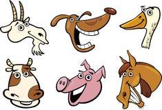 Teste degli animali da allevamento del fumetto impostate Immagini Stock