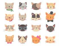 Teste dei gatti messe Fotografia Stock