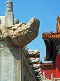 Teste del drago sulla parete Fotografia Stock