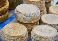 Teste del formaggio a pasta molle fotografie stock libere da diritti