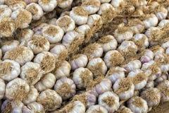 Teste dell'aglio Immagini Stock