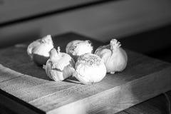 Teste dell'aglio su un tagliere di legno Immagine Stock