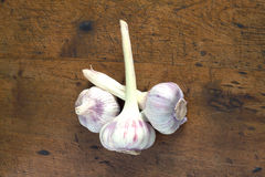 Teste dell'aglio sul primo piano di legno del fondo Fotografia Stock Libera da Diritti