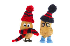 Teste della patata fotografia stock libera da diritti