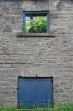Teste di cavallo nella vecchia struttura della finestra di pietra della costruzione immagine stock