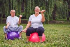 Teste di legno senior della tenuta delle coppie mentre sedendosi sulla palla i di esercizio Immagine Stock