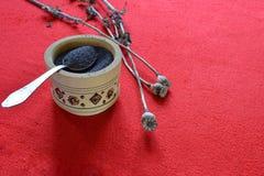 Teste e semi secchi del papavero Papavero blu immagine stock