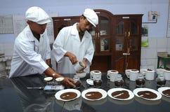 Teste herbata Zdjęcia Royalty Free