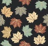 Teste padrão à moda com folhas de outono Fotos de Stock