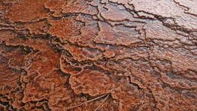 Teste padrão abstrato da associação térmica nas bacias do geyser Foto de Stock