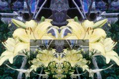 Teste padrão abstrato de elementos florais coloridos Interpretação de lírios amarelos ilustração royalty free