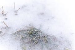 Teste padrão abstrato no inverno Fotografia de Stock