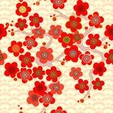 Teste padrão asiático Japonês, chineses Cherry Blossom Ornamento com motivos orientais Vetor fotografia de stock royalty free