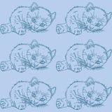 Teste padrão azul com gatos Fotos de Stock Royalty Free