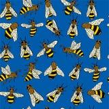 Teste padrão azul da abelha Foto de Stock