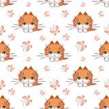 Teste padrão bonito do gato Fotos de Stock Royalty Free