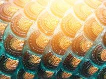 Teste padrão bonito no corpo dos nagas, no templo Tailândia Imagens de Stock