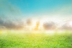 Teste padrão borrado contexto do sumário do céu do verde da natureza fotografia de stock royalty free