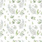 Teste padrão branco com ervas imagens de stock royalty free