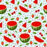 Teste padrão brilhante com melancia Foto de Stock Royalty Free