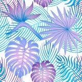 Teste padrão brilhante moderno do strelitzia do verão ilustração stock