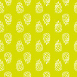 Teste padrão brilhante sem emenda do vetor com abacaxis Tirado à mão e Foto de Stock Royalty Free