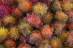 Teste padrão chinês do Rambutan do fruto Fotos de Stock