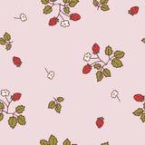 Teste padrão claro 2 do morango silvestre ilustração royalty free