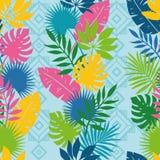 Teste padrão colorido brilhante da natureza Imagem de Stock Royalty Free