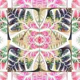 Teste padrão colorido das folhas Coleção - folha da árvore Y Fotos de Stock