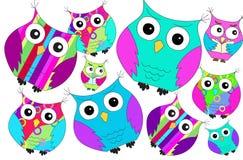 Teste padrão colorido engraçado das corujas Fotografia de Stock