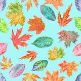 Teste padrão com as folhas de outono da aquarela Foto de Stock