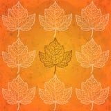 Teste padrão com as folhas de outono na laranja Foto de Stock