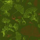 Teste padrão com as folhas verdes da nogueira-do-Japão Foto de Stock