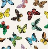 Teste padrão com borboletas ilustração do vetor