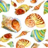 Teste padrão com conchas do mar Imagens de Stock