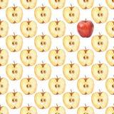 Teste padrão com fatia 1 da maçã Teste padrão sem emenda da aquarela Imagem de Stock